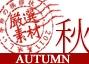 秋の厳選祭り